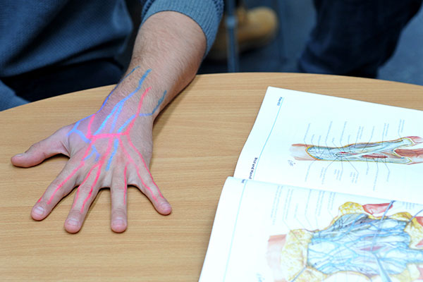 Health professions education unit cropped